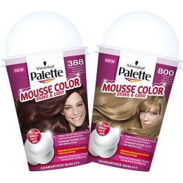 """Palette Краска для волос """"Mousse Color"""", 150 мл"""