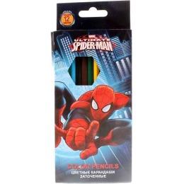 Spider-man карандаши цветные, заточенные, 12 шт