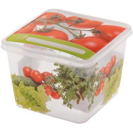 """Пластик центр емкость для продуктов """"Браво. Овощи"""" квадратная"""