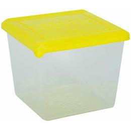 """Plast Team емкость для хранения продуктов """"Pattern. Лайм"""" квадратная"""